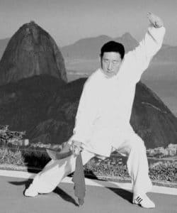 Chen Xiao Wang Wikipedia