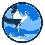 grue bleue calme nature eau