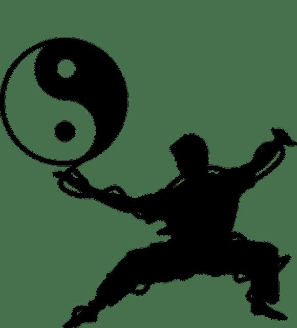 pixabay_taiji_yin_yang